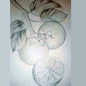 Гузелькины апельсины
